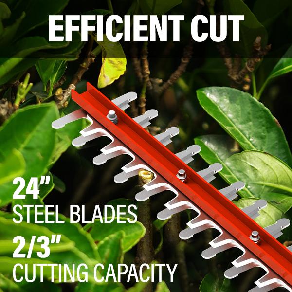 Efficient Cut