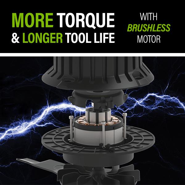 Brushless Motor